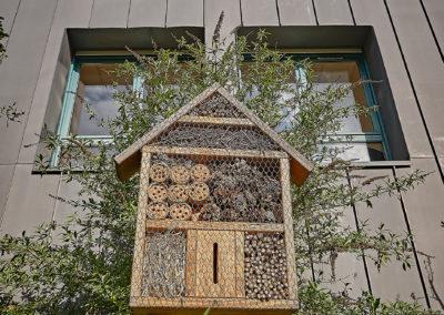Photo d'une petite maison pour insectes