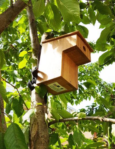 Photo d'un nichoir à oiseaux